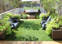 TOP 10 loại cây dễ trồng trên sân thượng